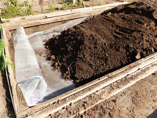 Pests Gopher Wire Installation neary completed - Rancheria Community Garden