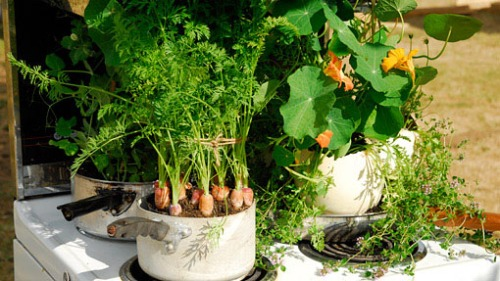 Garden Anywhere!  Fresh, container to kitchen! Totally convenient!