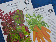 Mix it up with your Mesclun!  Baby carrots are mighty tasty and the tender leaves are edible too!