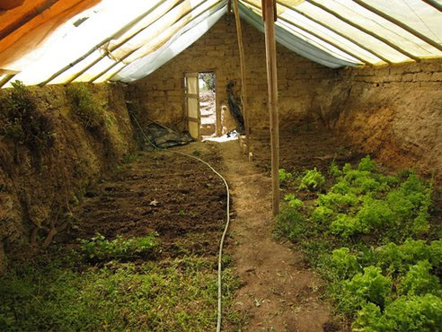 Greenhouse Walipini Pit Interior