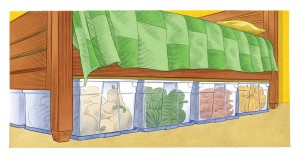 Store your Veggies under the bed!