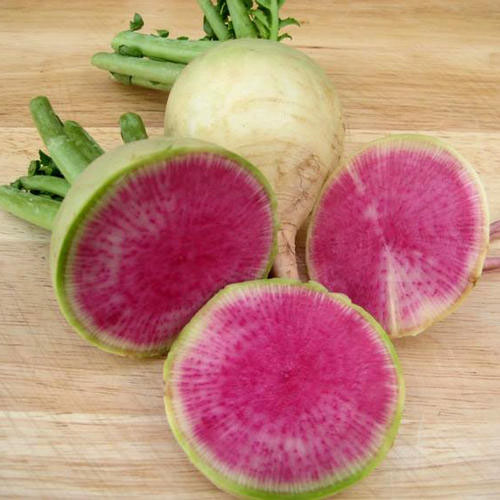 Radish Watermelon Chinese Red Meat
