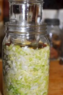 Cabbage Sauerkraut Jar on Lid holding cabbage down.