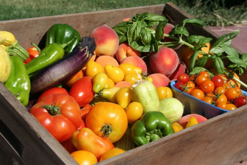 Summer Veggies Box