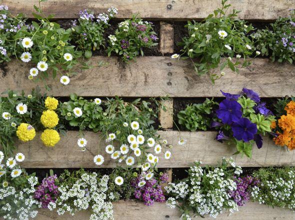 Pallet Garden Flowers
