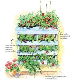 Pallet Garden organization