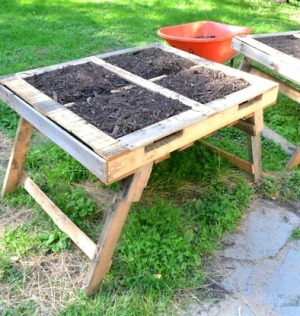 Pallet Garden Raised Bed