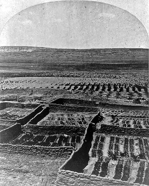 Waffle gardens at the Zuni Pueblo were planted near the river. 1873 by Timothy H. O'Sullivan