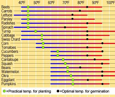 Soil Germination Temperatures Veggies Parsons
