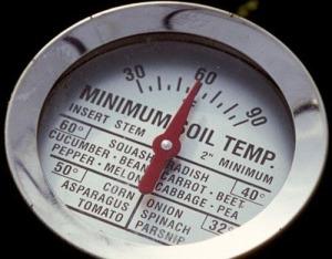 Soil Thermometer Veggies