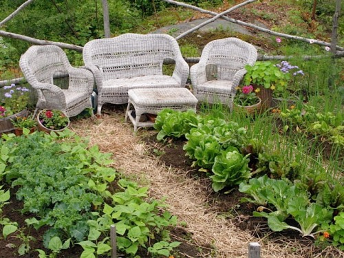 Garden Low Maintenance Wicker
