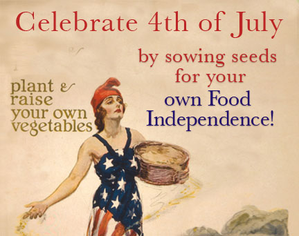 4th July US Flag Woman Garden Seeds Independence