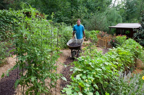 Feed Your Veggie Garden!