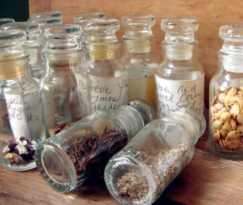 SeedSaving Glass Jars Labels