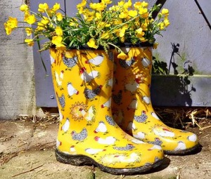 Wonderful Chicken Sloggers Rain Garden Muck Boots Women