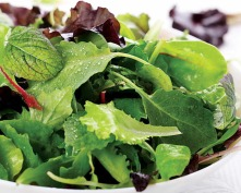 Lettuce - Mesclun Mixed Baby Greens