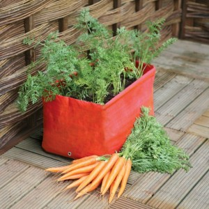 Container Carrot Patio Planter Haxnicks