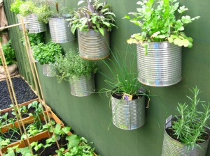 Container Wall Cans! Any fence or wall will do!