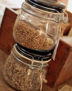 Seeds Jars Seedsaving