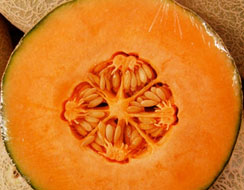 Seeds Remove Dry Melon