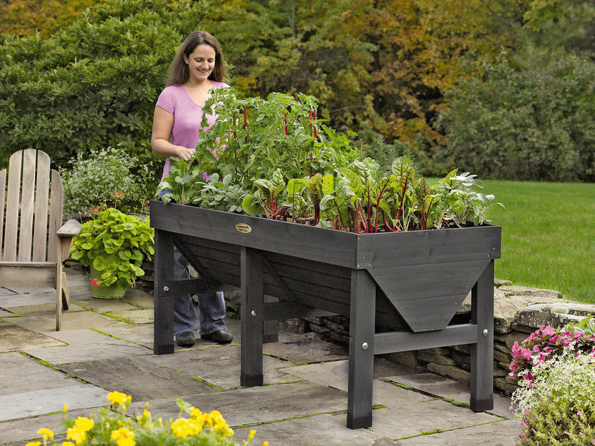 Merveilleux X VegTrug Stand Up Gardening Bed For People With Disabilities
