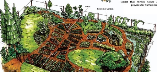 Design Veggie Garden Plan Trees