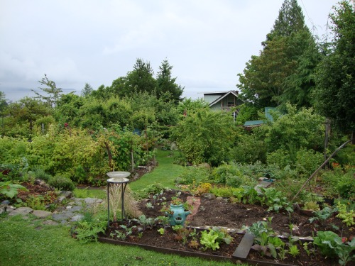 Food Forest - Forest Garden Home