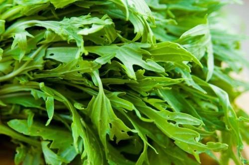 Lettuce Mizuna Leaves