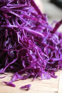 Tasty shredded Red Cabbage