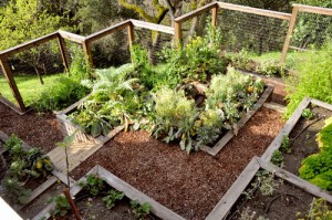 Garden Design Slope Hillside