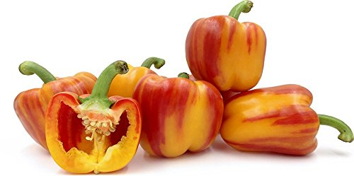 Beautiful Red on Yellow striped Bell Peppers from the Netherlands!