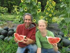 May is for planting Melons for eating all SUMMER! Goldfarb & Page-Mann Regional Fruition Seeds - Juicy Watermelon!