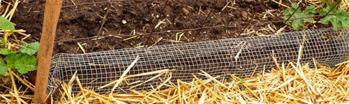 Seedlings Protection Bent Wire Row Cover