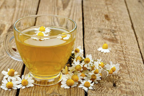 Chamomile Herb Tea Cup Flowers