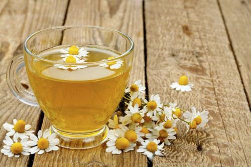 Chamomile Herb Tea Cup Flowers