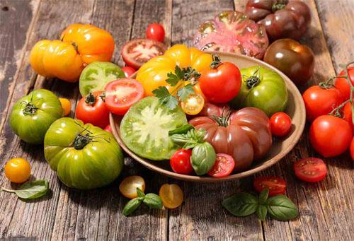 Tomato Varieties Feast!