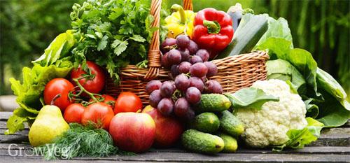 July basket of tasty summer veggies!