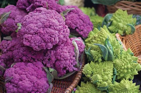 Purple Broccoli and Romanesco Fractals, a Hybrid with Cauliflower