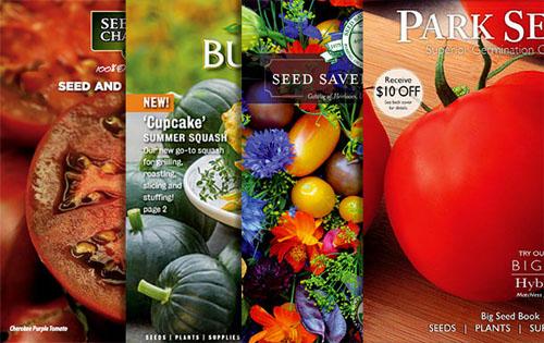 Veggie Seed Catalogs 2019