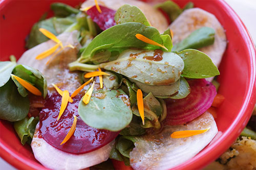 Purslane Salad Baker Creek Heirloom Seeds Recipe