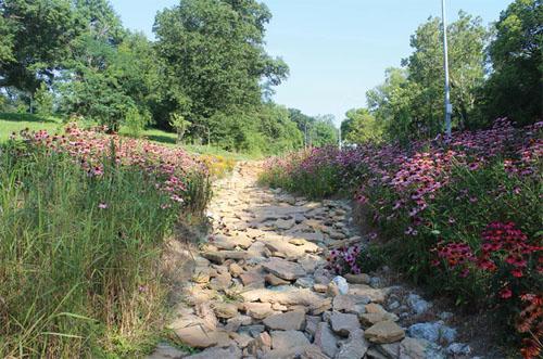 Climate Crisis Food Cincinnati's Rapid Run Park Bioswale Slow Sink Spread Water