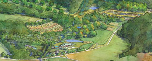 Climate Crisis Regenerative Agriculture