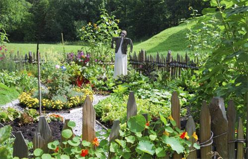 Design Your Beautiful Summer Garden!