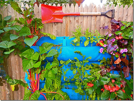 Container Gardening - fence bags!