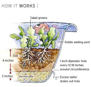 Container Gardening Self Watering Bowl or Pool!