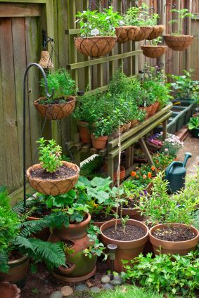 Tiered Space Saving Container Gardening!
