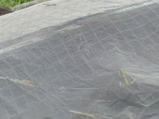 Bird Protection Cover over large open wire